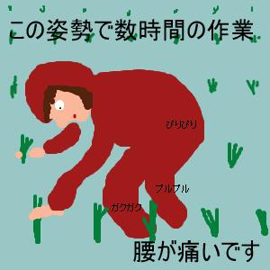 Cocolog_oekaki_2012_06_22_11_24